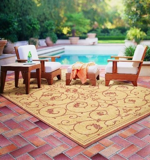 When You Get This Indoor Outdoor Rug Dirty You Can Just Hose It Off