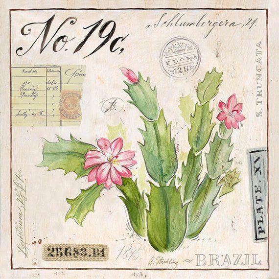 Christmas Cactus Print Cactus Illustration Cactus Art Cactus