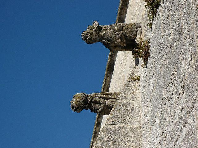 Gargouilles du Château de Tarascon | Bouches du Rhône
