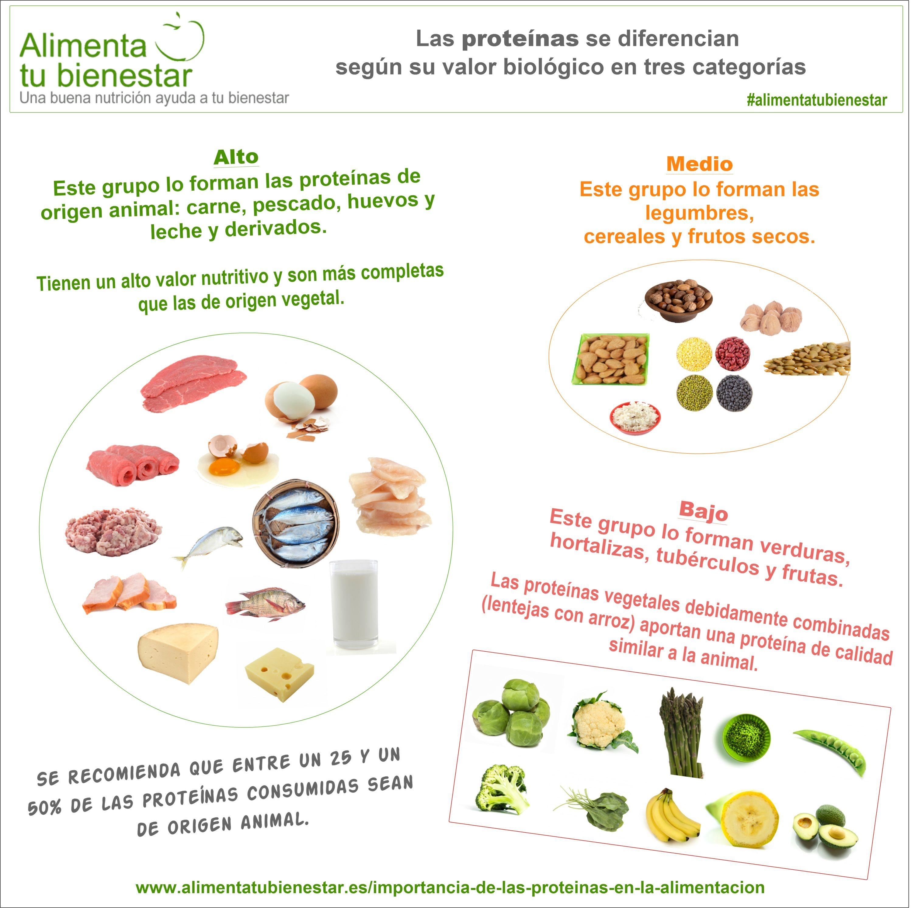 La Importancia De Las Proteínas En La Alimentación Alimentacion Saludable Nutrición Dietetica Y Nutricion