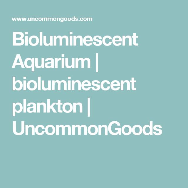 Bioluminescent Aquarium | bioluminescent plankton | UncommonGoods