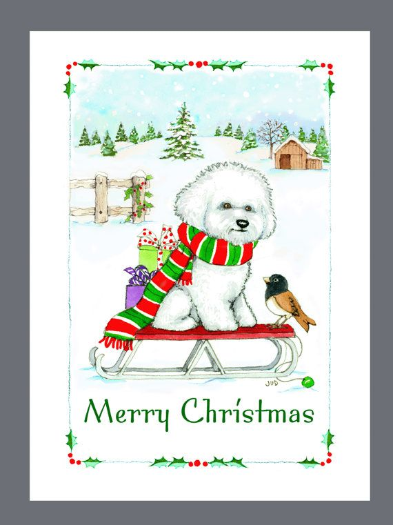White Box of 16 Cards /& 16 Envelopes Dog Christmas Cards Poodle