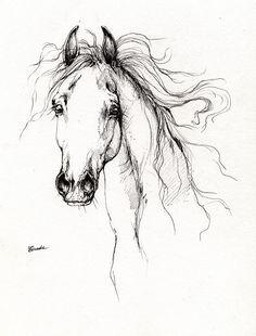 Arabian Horse Drawing 4 Drawing - Arabian Horse Drawing 4 Fine Art Print
