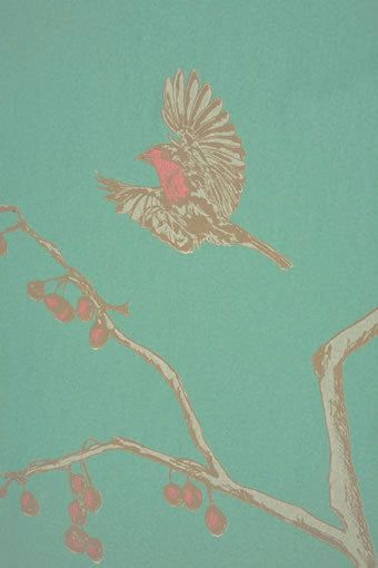 The English Robin Jade BG0300101