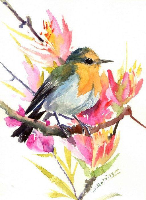 Bird art Robin painting, 12 x 9 in, original watercolor, robin, bird lover art, birding bird painting,