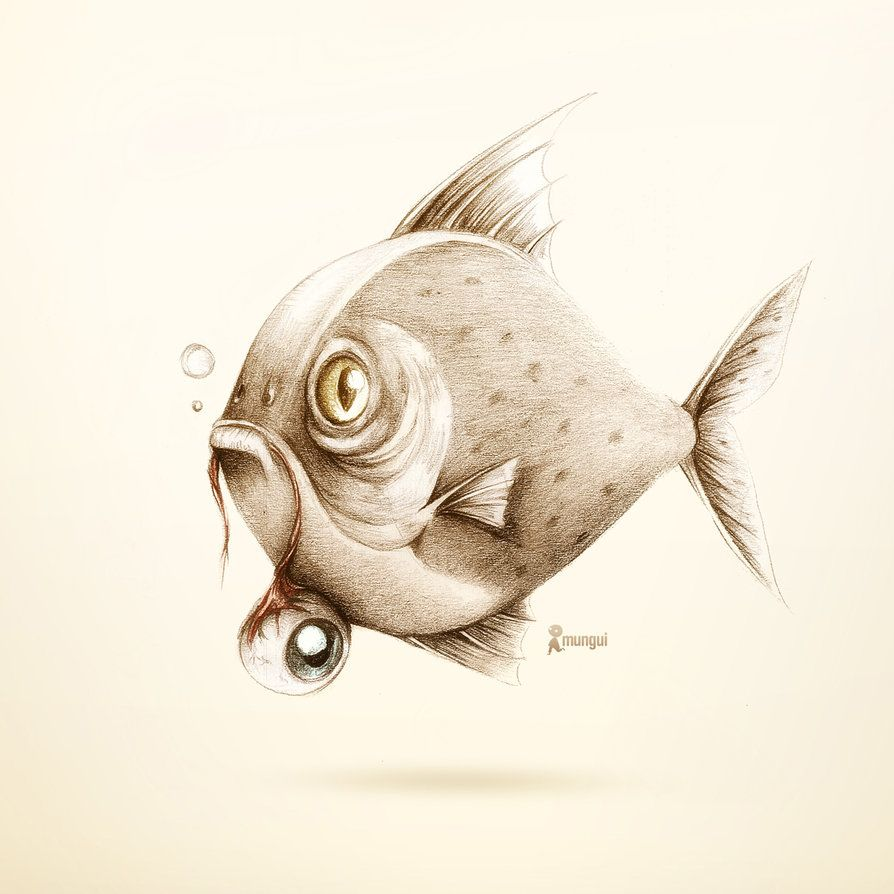 Piranha | Piranha | Pinterest