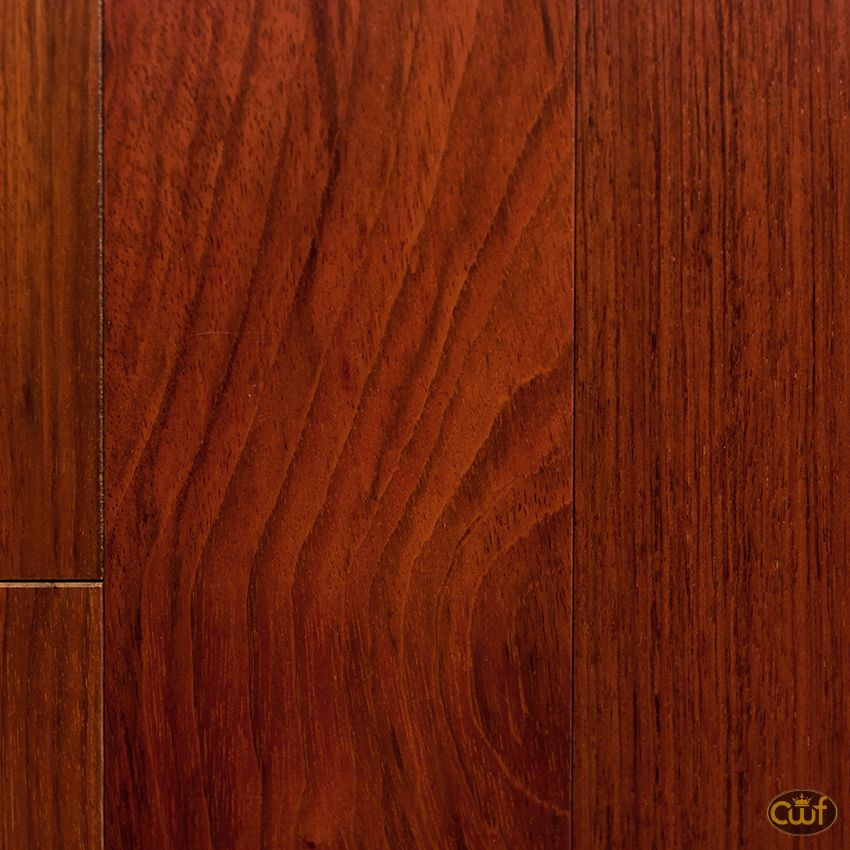 Brazilian Cherry X 5 Carolina Floor Covering Flooring Wood Floors Wide Plank Hardwood Floors