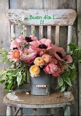 Geburtstag Liebe, Haus Ideen, Garten Ideen, Drinnen, Einfach, Blumen  Pflanzen, Deko Blumen, Bepflanzung, Ihr Stil