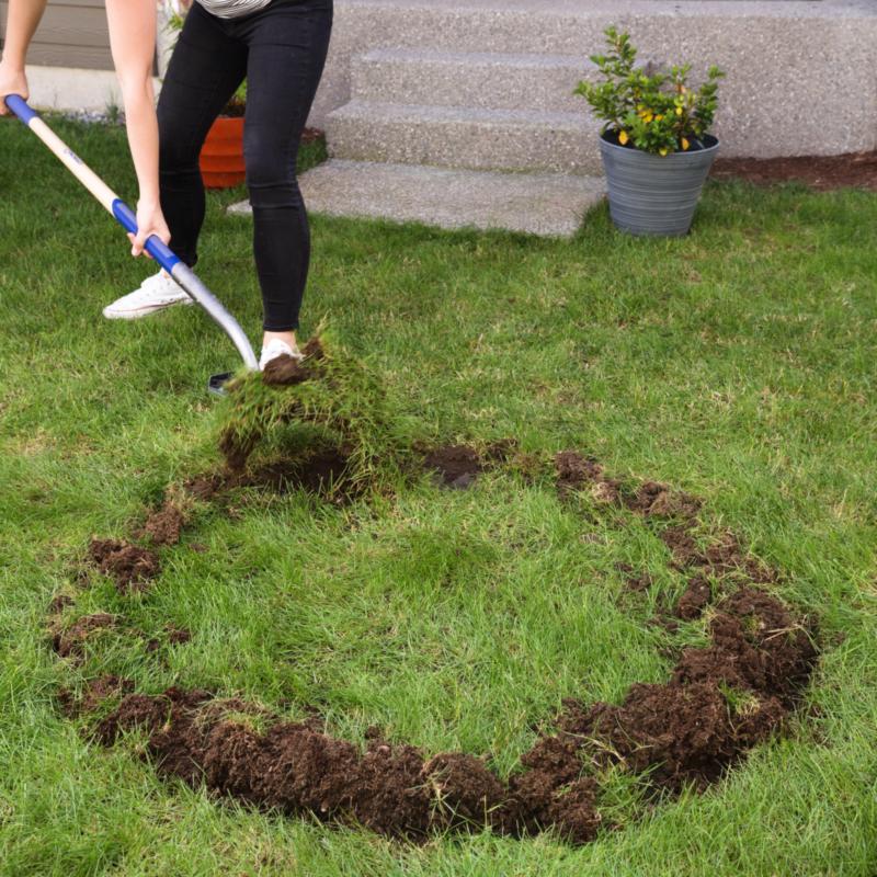 DIY Backyard Fire Pit: Build It in Just 7 Easy Steps ...