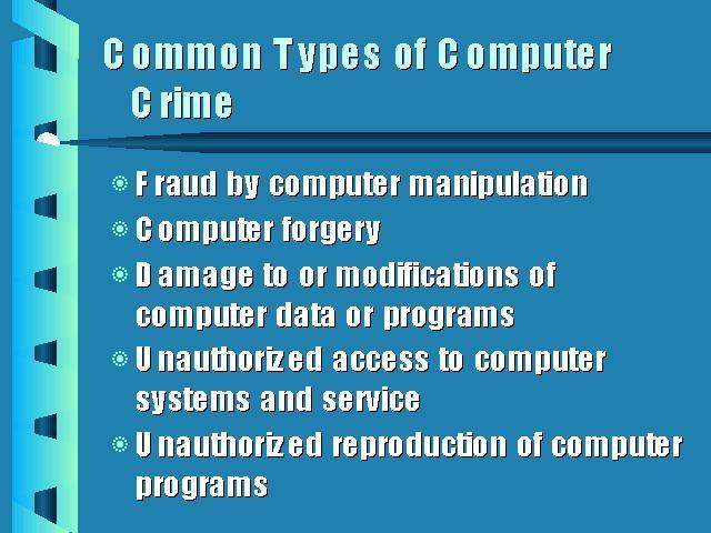 Computer Crime   img1.jpg