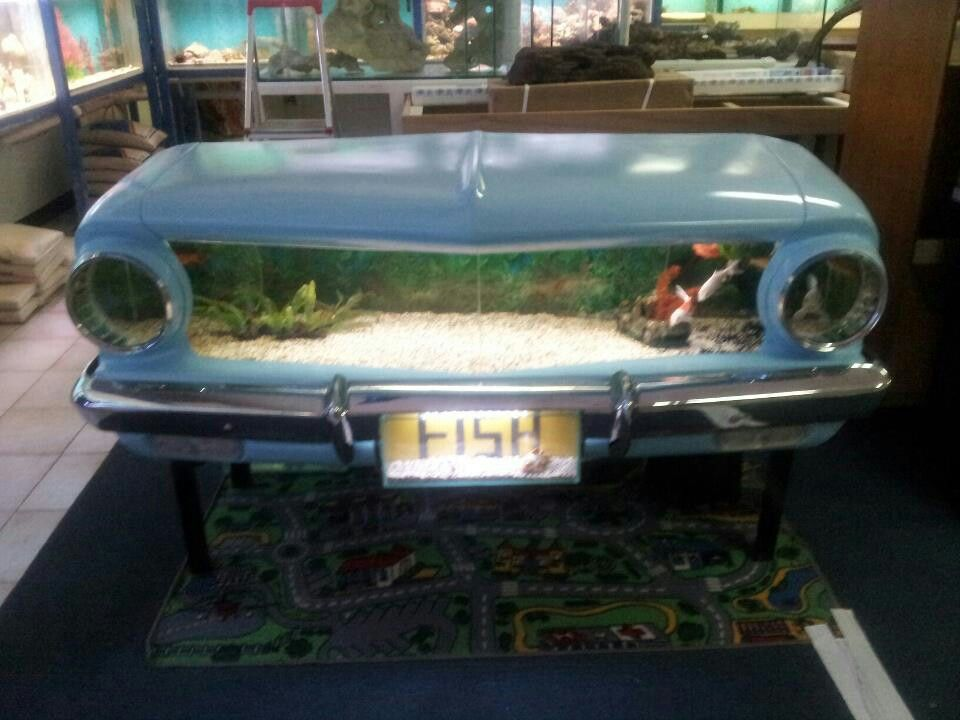 Eh holden front end fish tank cool ideas pinterest cars for Car fish tank