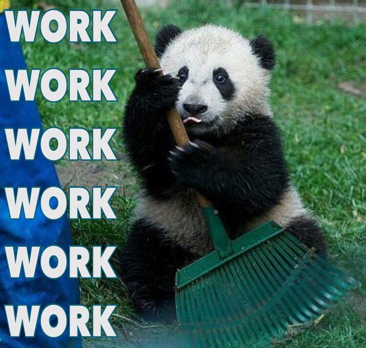 Too Easy And Adorable Kawaii Cute Funny Daily Week Day Baby Panda Cub Meme He Said Me Haffi Work Work Work Work Work Work