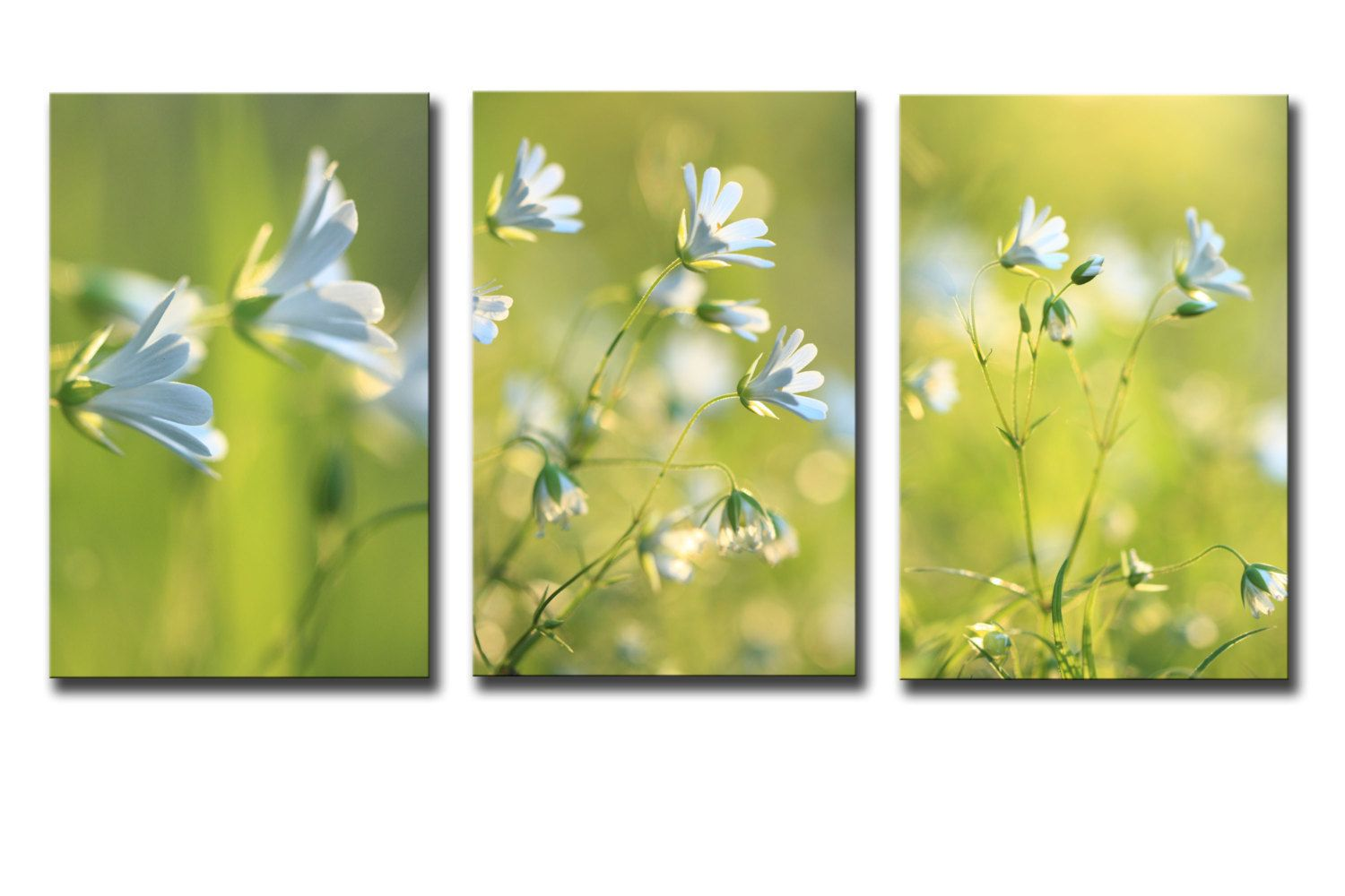 wildflower wall art, white flowers, canvas panels, triptych wall art ...
