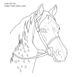 12 Free Horse Patterns to embroider and embellish pillows