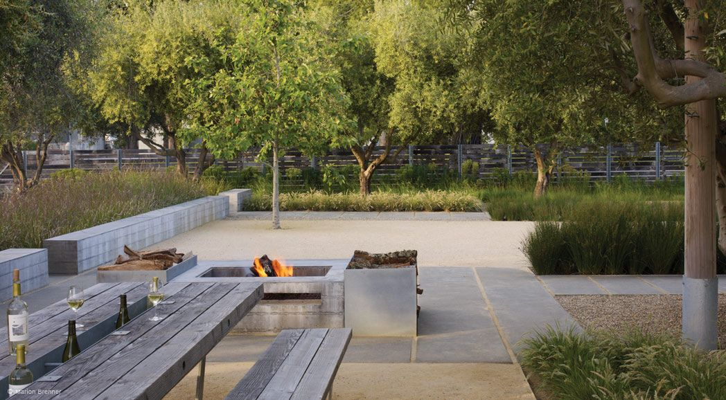 Medlock Ames Winery Nelson Byrd Woltz Landscape Architects
