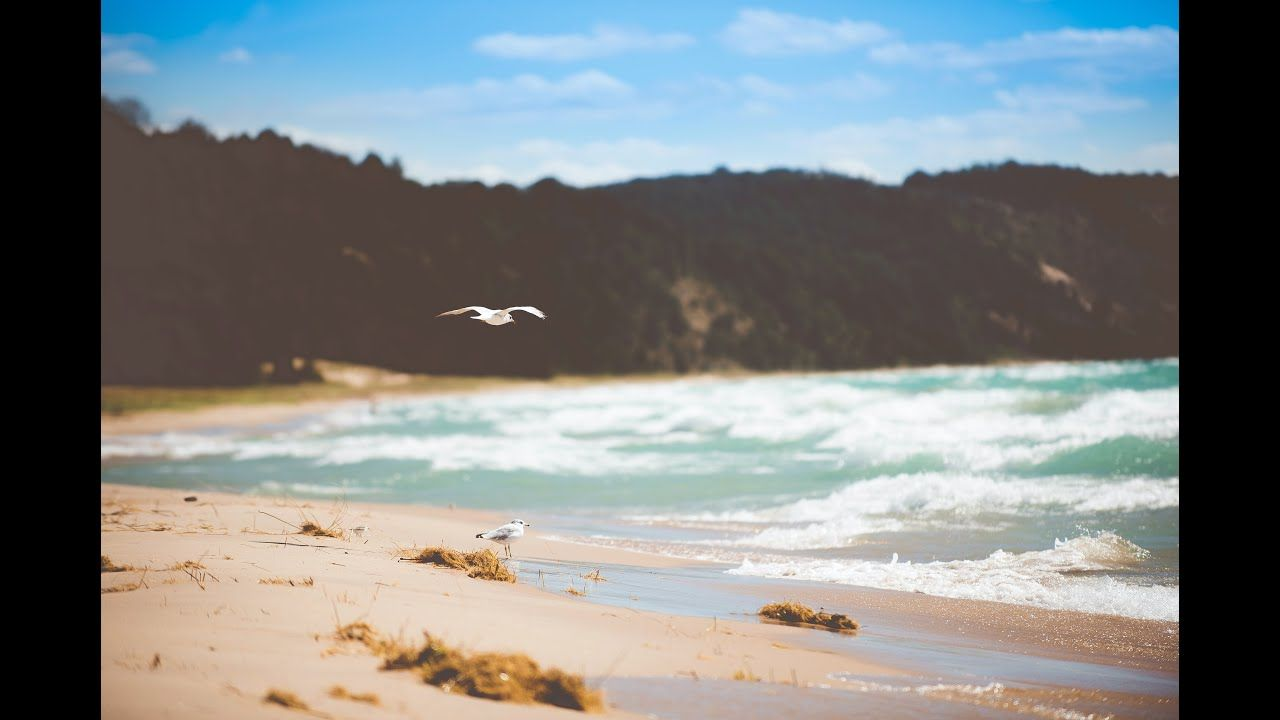 Ocean Waves Sound And Bird Sound Relaxing Focusing Sleeping Working Bac Ocean Wave Sounds Ocean Waves Ocean