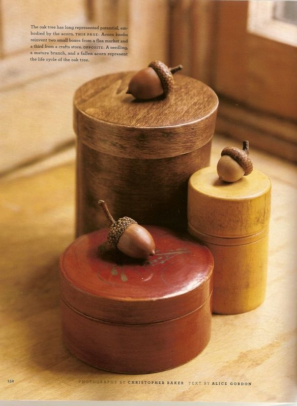 Reinvent ordinary boxes with acorn knobs