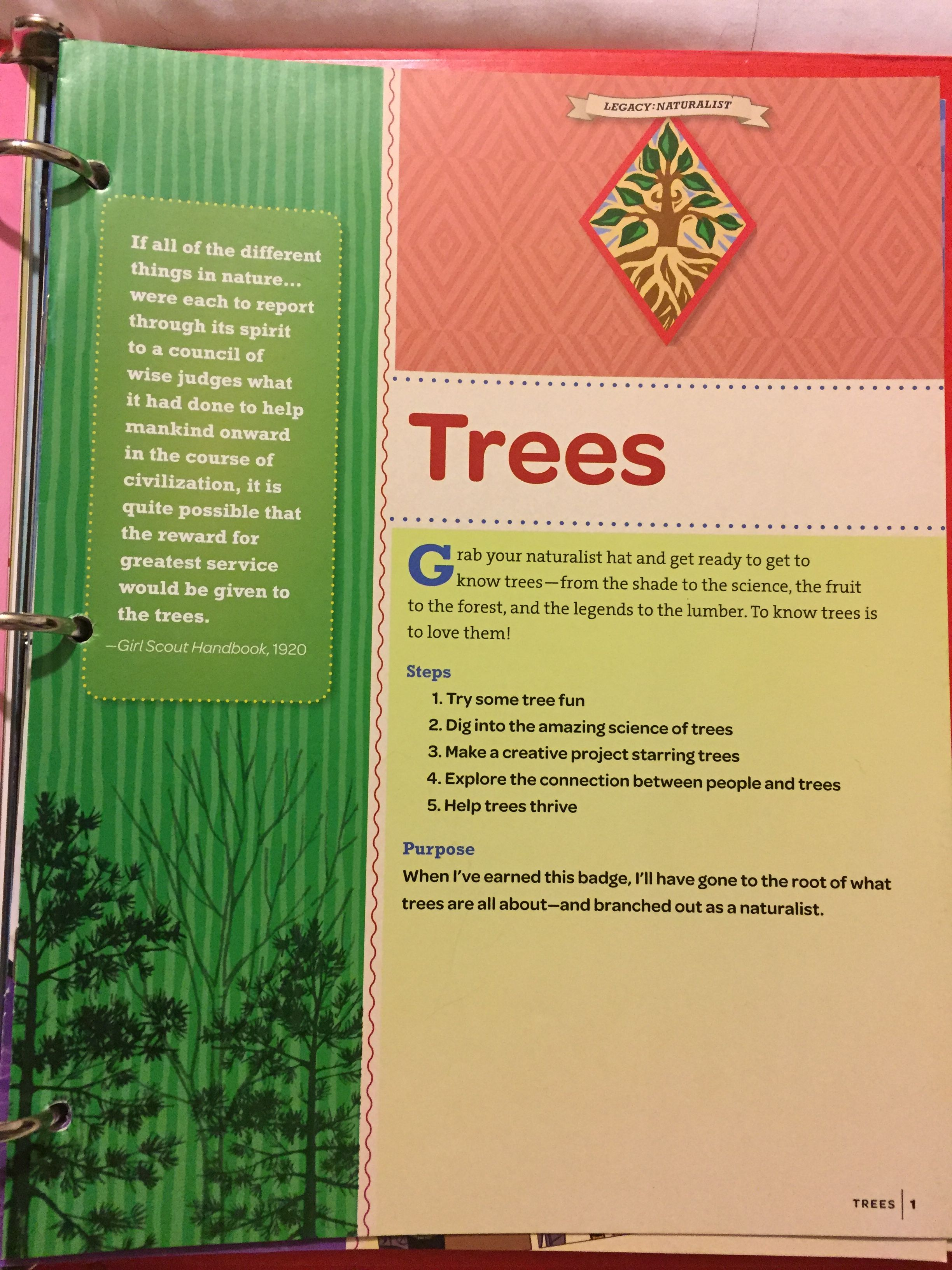 Pin By A Scout Is On Cadette Gs Trees Badge