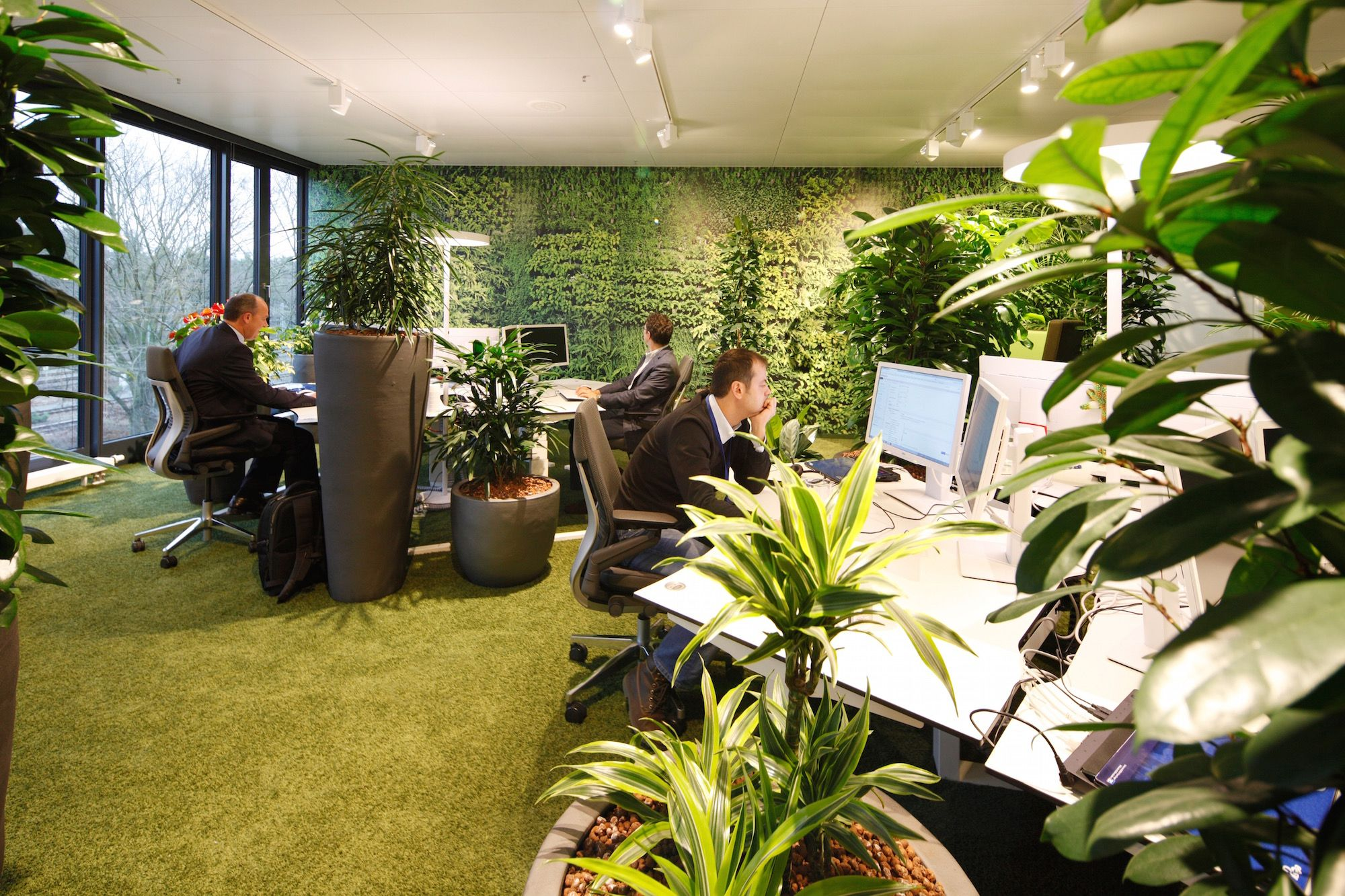 office greenery. Interesting Greenery EasyCredit HQ  Work Area  Garden Typology EasyCredit Office Plants And Office Greenery E