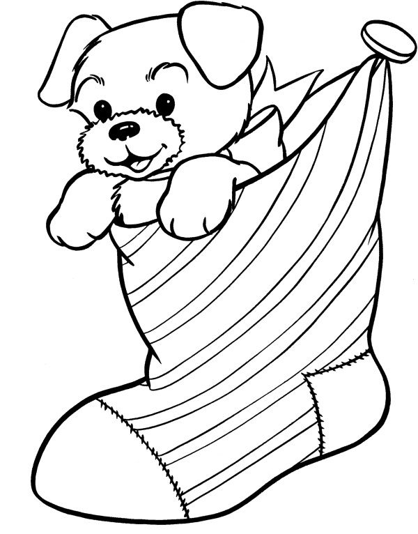 Dogs Sign In Socks Dogs Pinterest Kids net - fresh dltk birds coloring pages