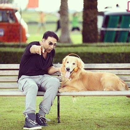 Watch Entertainment Starring Akshay Kumar Golden Retriever
