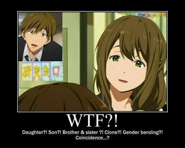 Free! Iwatobi swim club memes part 5   Anime Amino