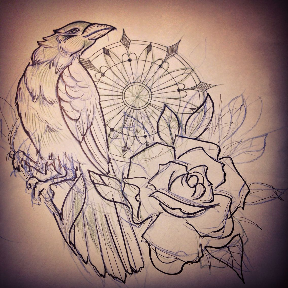 Study for a cover up. Neotraditional crow and rose. | My ...