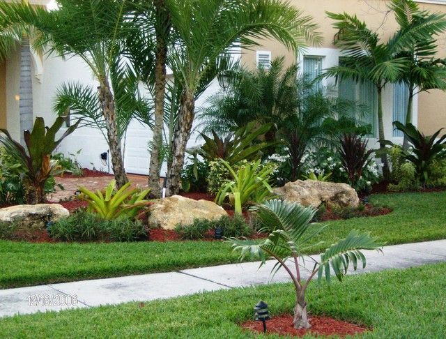 Tropical front yard landscaping ideas with palm trees for Florida landscape ideas front yard