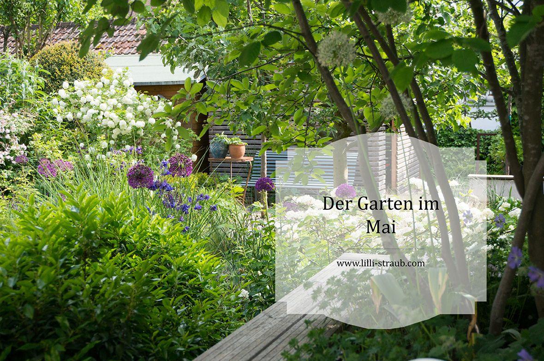 Gratis Gartentipps Lilli Straub Den Traumgarten Planen In 2020 Traumgarten Garten Garten Planen