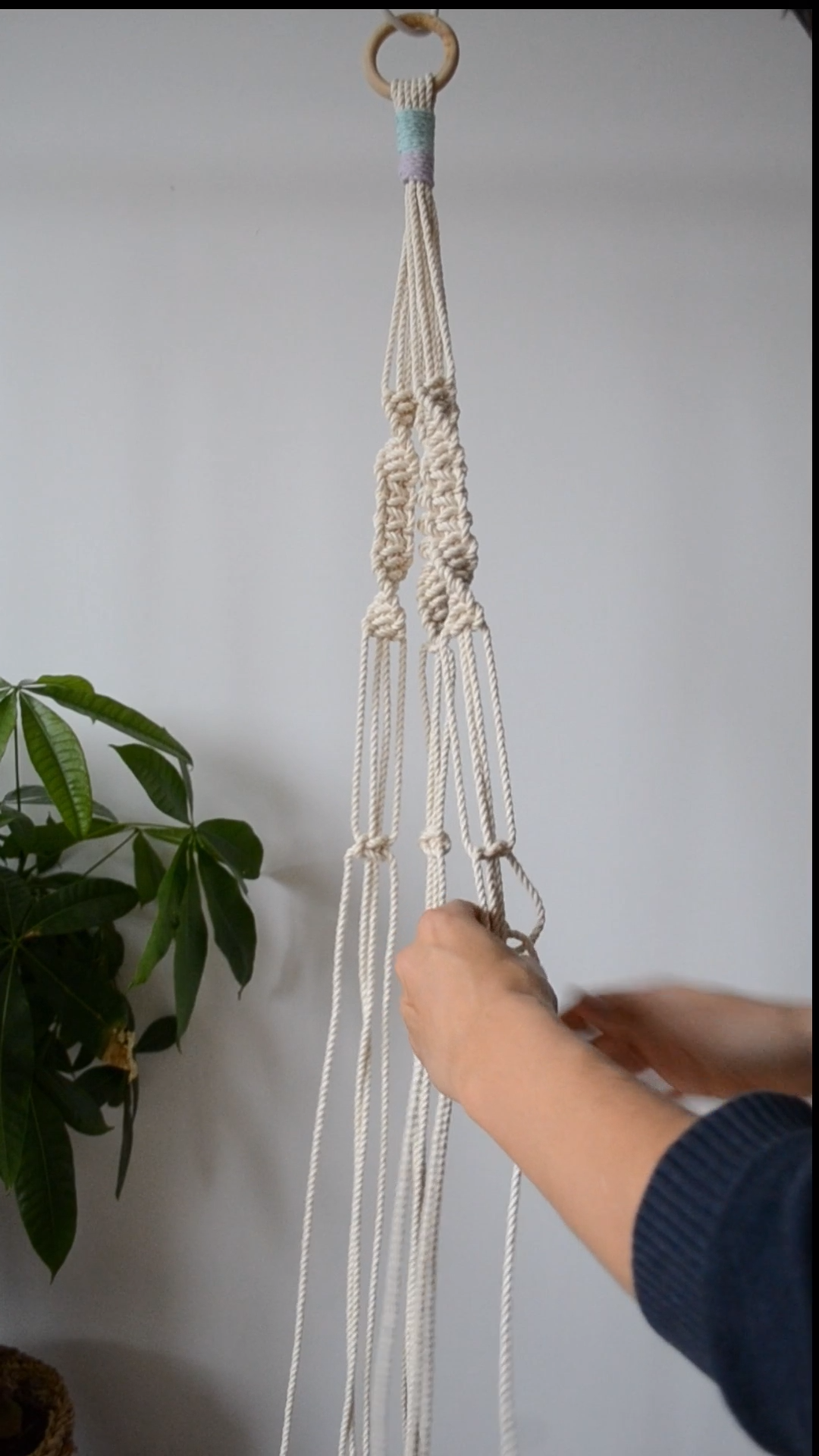 Macrame Plant Hanger Tutorial -   16 plants Hanging crafts ideas