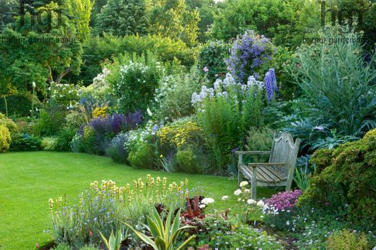 Harpur Garden Images Ltd Traditional English Cottage Lawn Bench Seat Chair Focal Point Border Delphinium Campanula Salvia Achillea Philadelphus