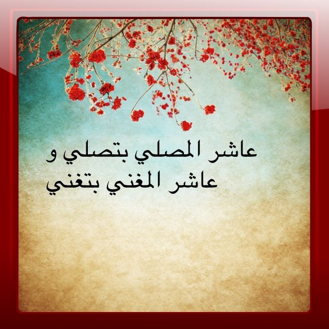 Pin By Amena On أمثال من التراث Funny Facts Arabic Funny Quotes