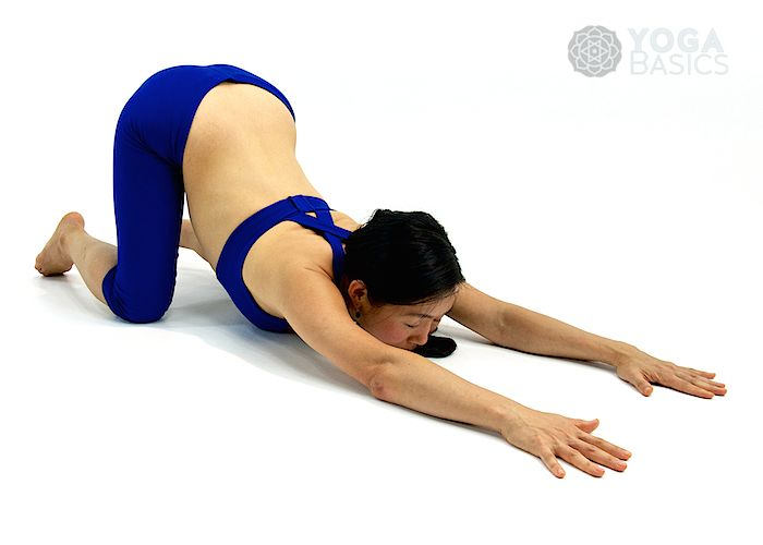 Photos, instructions, benefits, modifications and variations for practicing Extended Dog Pose Pose.