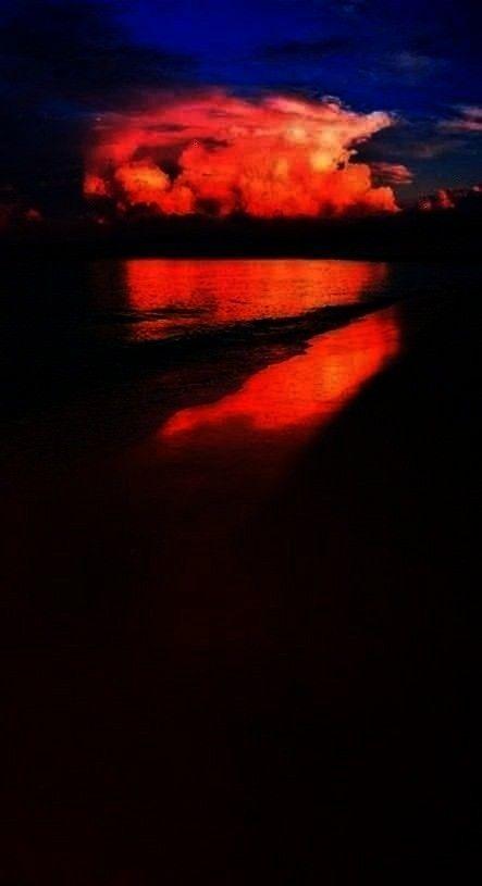 Photography Nature  Season Backdrops Summer Backdrops Beach Background Sunset X39-E  I love the sea