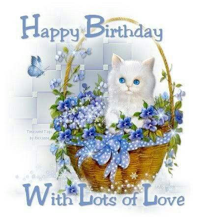 White Cat Blue Flowers Hy Birthday