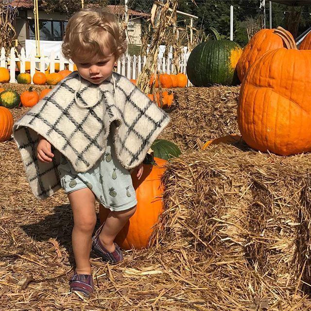 Ponchos and pumpkins, the perfect recipe for fall!!  ▪️. ▪️. #kidsponcho #babyponcho #ponchos #muchoponcho #giftsthatgiveback #poncholover #poncho #marylana #handmade #loommade #beachponchos #campingponcho #surfponcho #kidsfashion #kids #baby #babyfashion