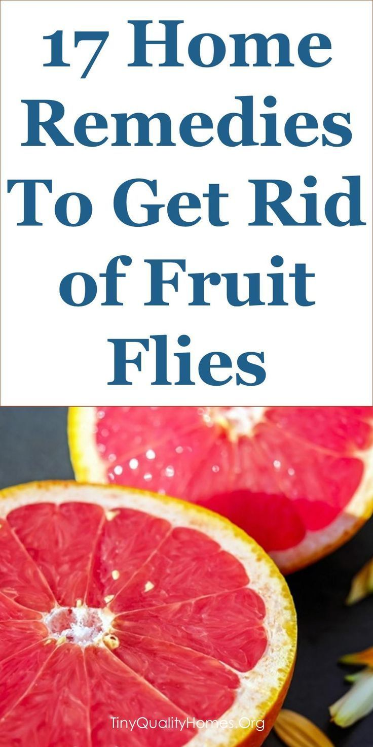 17 Home Remedies & Fruit Fly Traps To Get Rid of Fruit