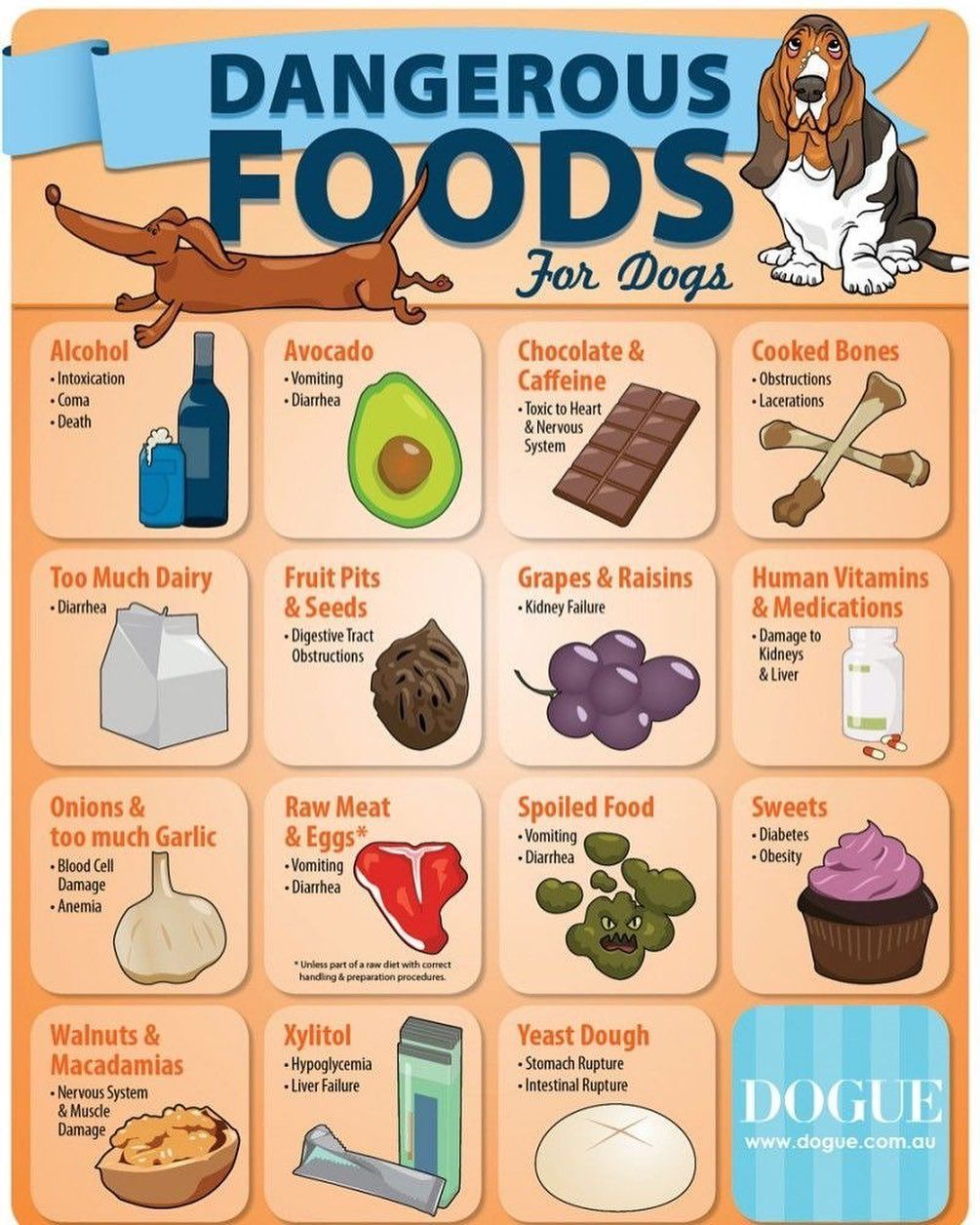 Did You Know That These Common Household Foods Could Be Toxic To