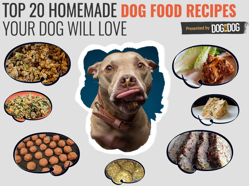 Top 20 Healthy Homemade Dog Food Recipes Your Dog Will Love Dog