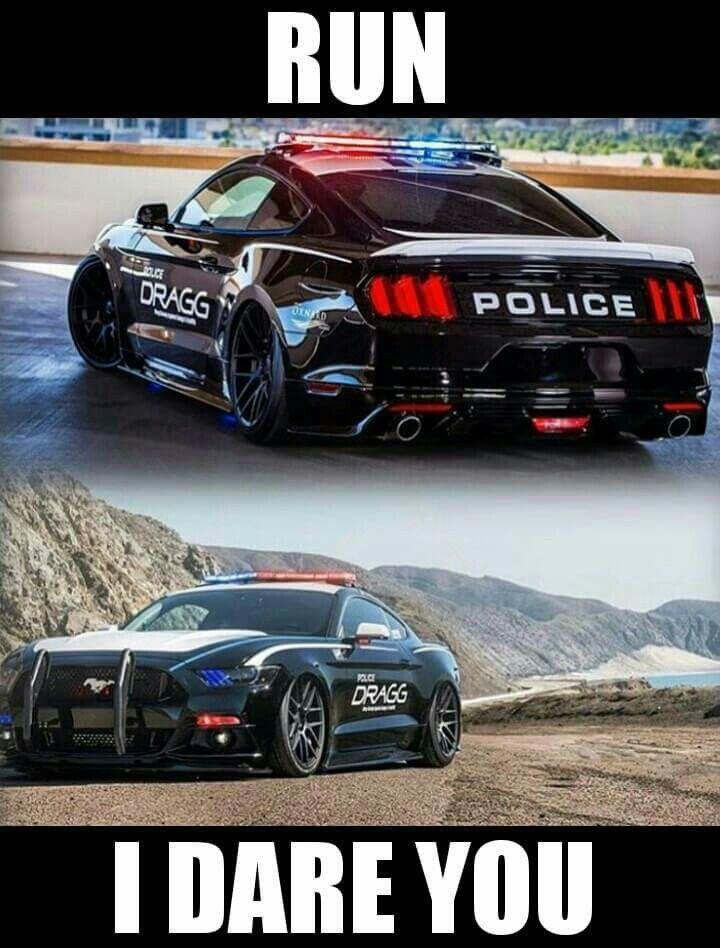 2016 ford mustang gt performance package 5 0 police chase car need for speed. Black Bedroom Furniture Sets. Home Design Ideas