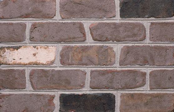 Silas Lucas Brick General Shale Silas Lucas Brick Brick Thin Brick Shale