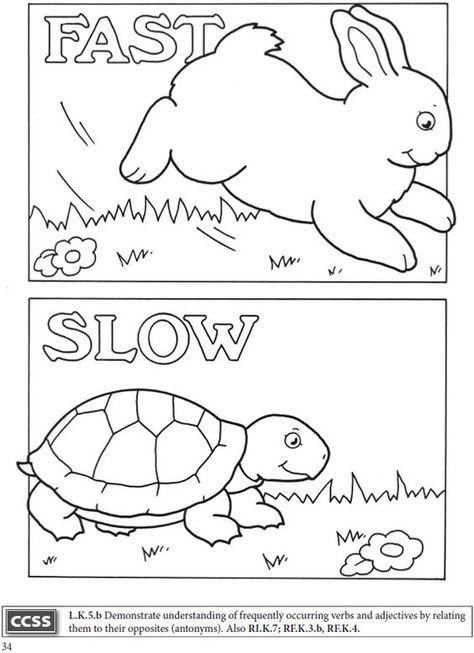 Image Result For Little Beaver And The Echo Worksheet Opposites Preschool Preschool Reading Opposite Colors