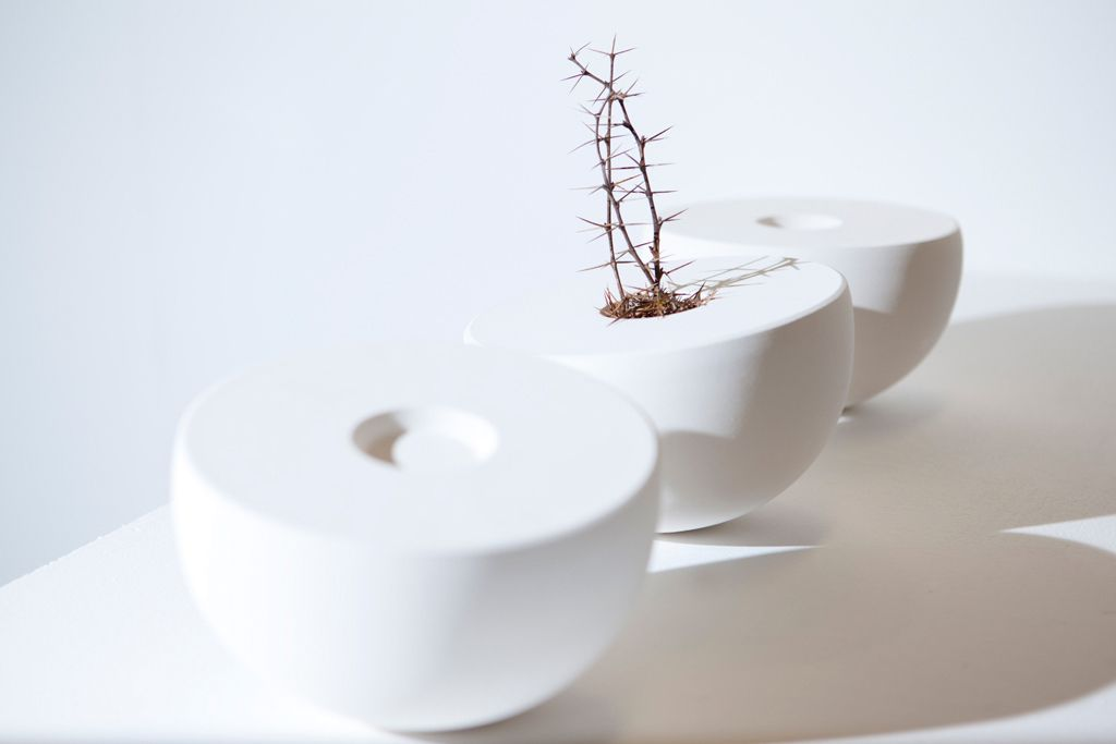 Shane Porter Ceramics • Ceramics Now - Contemporary ceramics magazine