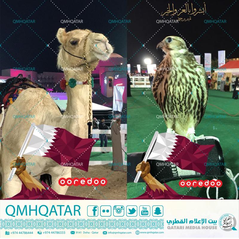 Pin by QMH on qatar Creative