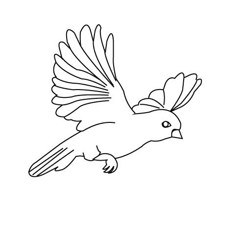 Printable Flying Sparrow Bird Coloring Pages Bird Coloring Pages Kidsdrawing Free Coloring Pages O Bird Coloring Pages Coloring Pages Free Coloring Pages