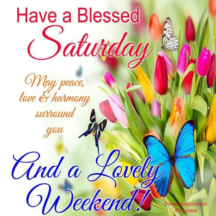 Have A Blessed Saturday And A Lovely Weekend Good Morning Saturday