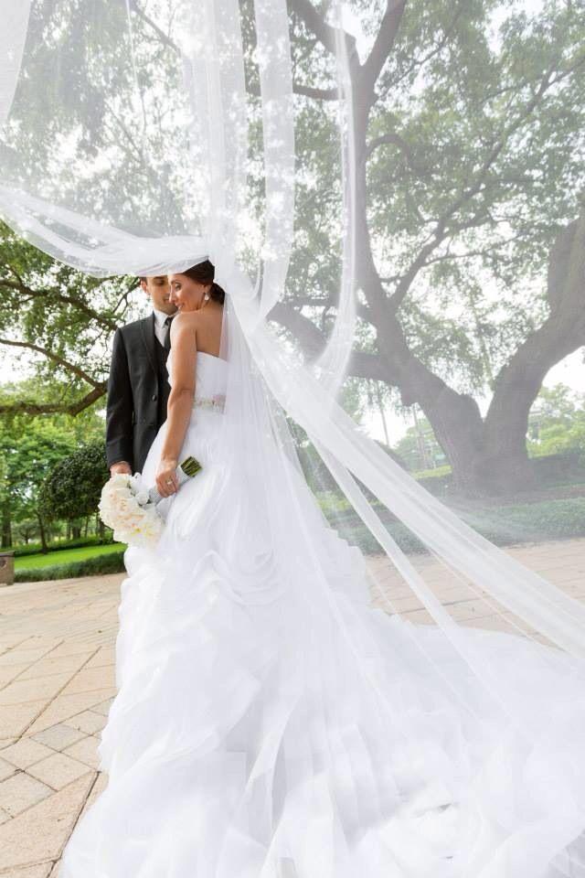 #weddingphoto#brideansgroom#veil