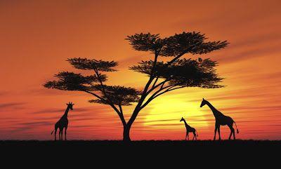 Así Lo Pienso áfrica Paisaje Para Pintar Paisajes De Africa Pinturas Africanas