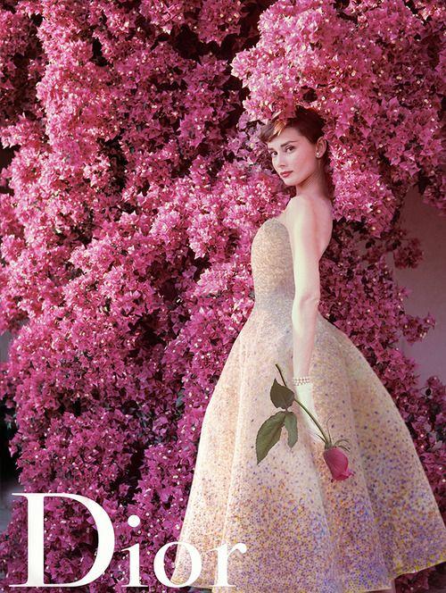 Audrey Hepburn for Miss Dior (1955) | c: | Pinterest | Rosas, Modelo ...