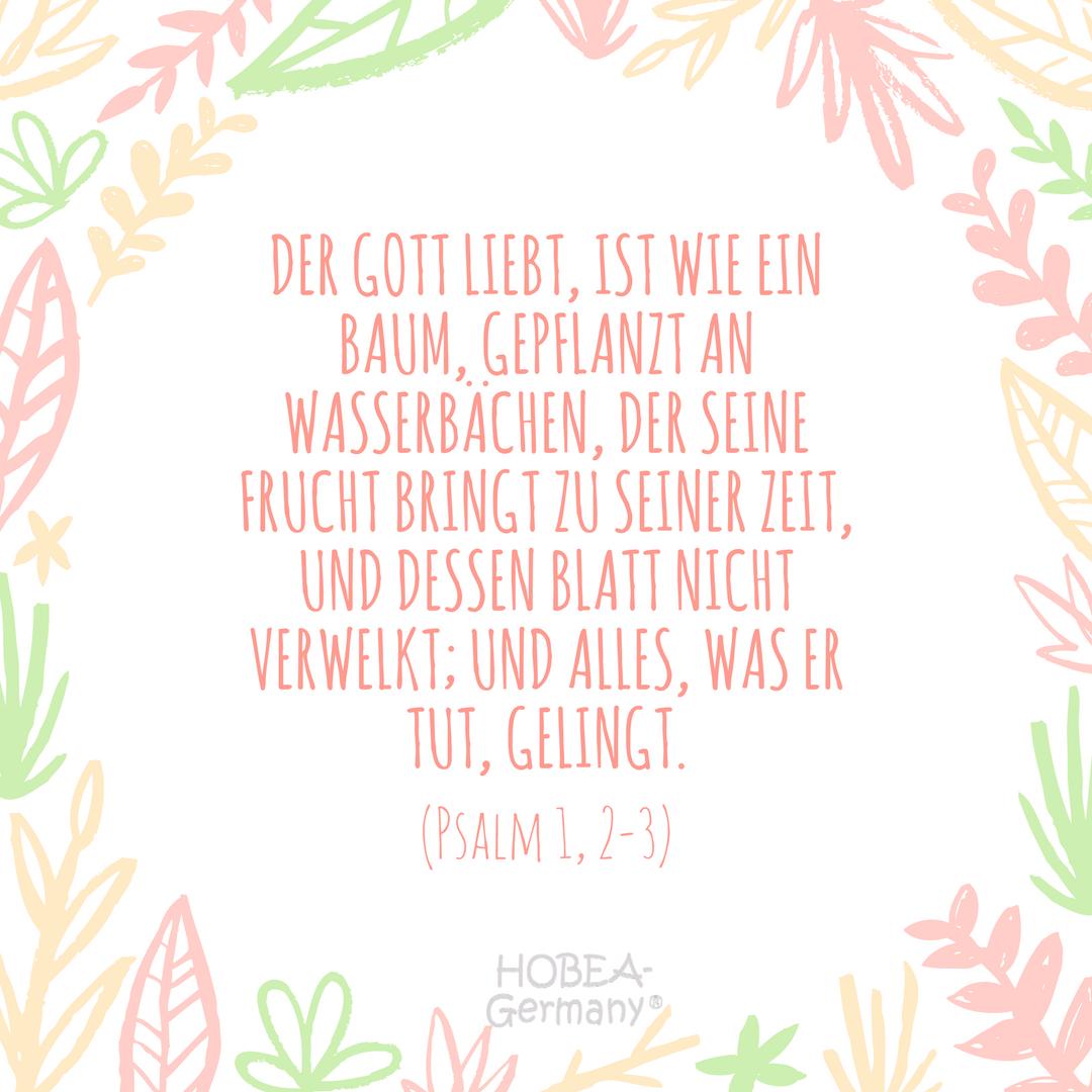 Inspiration Fur Trauspruche Gesucht Hier Entlang Spruche Hochzeit Bibelverse Hochzeit Zitate Liebe Hochzeit
